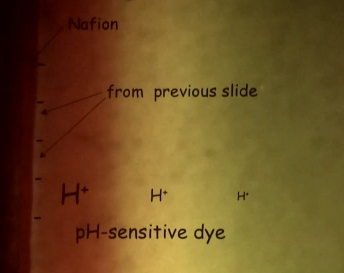 EZ ph sensitive dye sideways